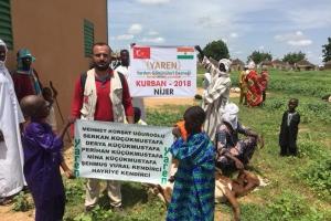 Nijer ve Osmaniye Çadır Kentteki Kurbanlar Kesiliyor