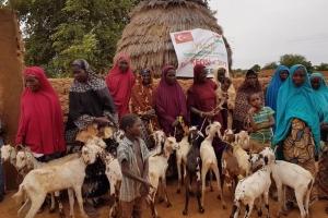 Ocak ayında Nijer'de Süt Keçisi Dağıtımı Gerçekleştirilecektir
