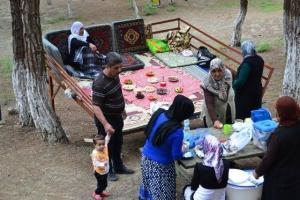Piknik Organizasyonumuz