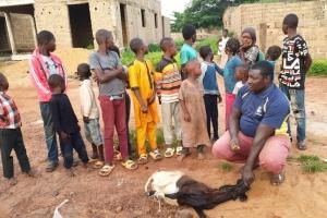 Afrika ve Arakan Kamplarında Adak, Akika ve Şükür Kurbanları Kesilmeye Devam Ediyor