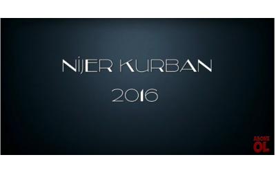 Nijer Kurban 2016
